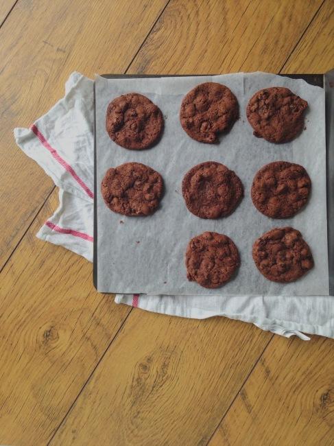 Rye, Raisin and Chocolate Cookies